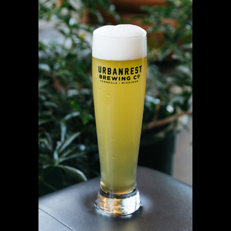 16oz Pilsner Glass